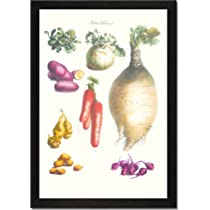 Framed Art Poster 20x30, Vegetables; onion, potato, carrot, roots, tubers