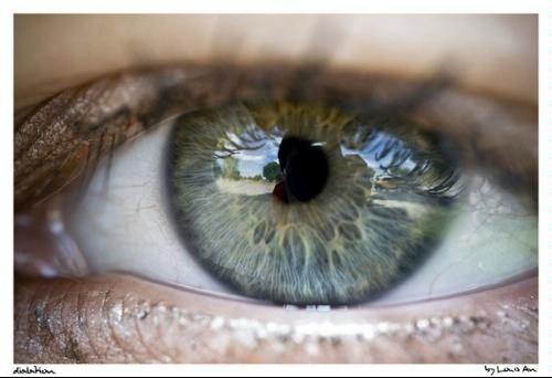 Closeup of an eye with Canon macro 60mm