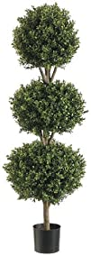 54 Triple Ball Shaped Boxwood Topiary Plant with Plastic Pot
