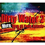 Kris Needs Presents Dirty Water: More Birth of Punk Attitude No. 2