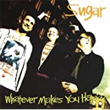 Whatever Makes You Happyby Sugar