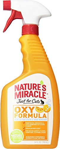 natures-miracle-just-for-cats-orange-oxy-power-stain-odor-remover