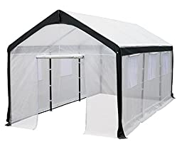 Spring Gardener Gable Greenhouse, 10 Feet X 20 Feet X 9 Feet