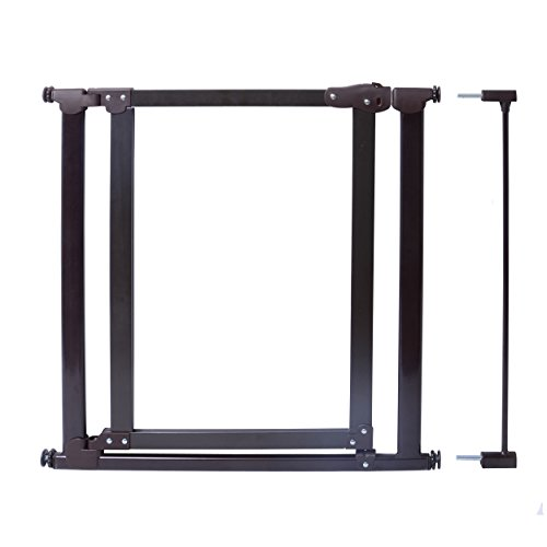 Evenflo Embrace Clear Panel Gate