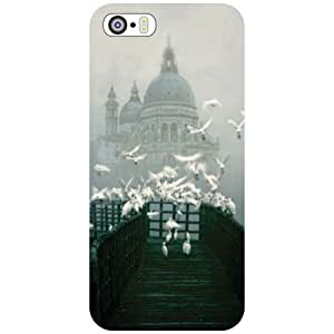 Printland Back Cover For Apple iPhone 5S - Artful Phone Cover (Printed Designer)