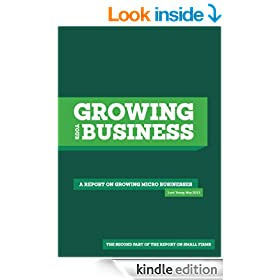 Growing Your Business: A report on growing micro businesses (the second part of the report on small firms)
