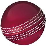 Gunn & Moore Skills Cricket Ball