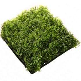 Tapis gazon vert vert fonc cuisine maison - Tapis vert imitation gazon ...