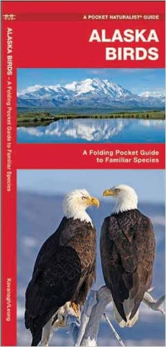 Alaska Birds: A Folding Pocket Guide to Familiar Species (Pocket Naturalist Guide Series)