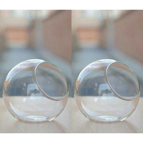 MyGift Small Glass Ball Terrarium, Tabletop Air Plant Display Globe, Set of 2