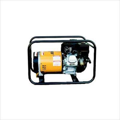 Winco Winco WT3000H Industrial Portable Generator, 3,000W Maximum, 102 lb.