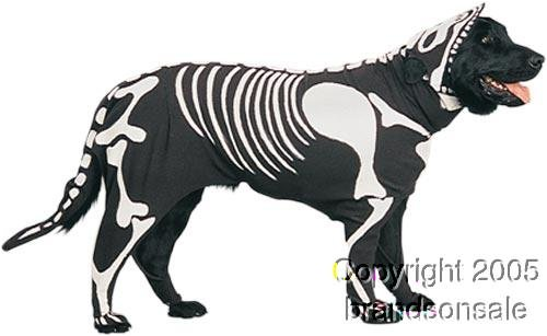 Pet Skeleton Dog Halloween Costume For Small