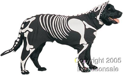 Pet Skeleton Dog Halloween Costume For Small