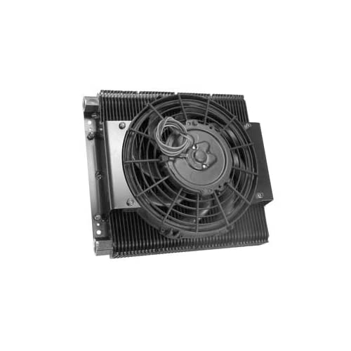 Amazon.com: EMPI 00-9293-0 96 Plate VW, Sand Rail & Off