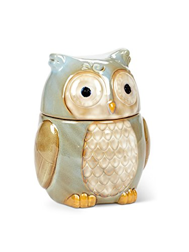 Owl Cookie Jars For Sale On Flipboard