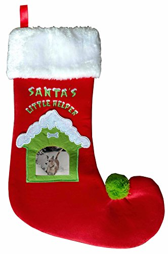 pet-stocking-with-snow-covered-photo-pocket