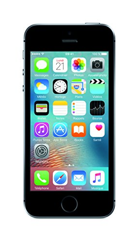 apple-iphone-se-smartphone-debloque-4g-ecran-4-pouces-64-go-simple-nano-sim-ios-gris-sideral