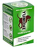 Yumove Young and Active Dog Joint Supplement