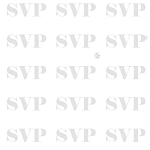 SVP Manual send by e-mail 04