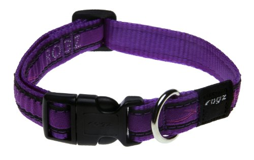 Rogz Fancy Dress Medium 5/8-Inch Scooter Dog Collar, Purple Chrome Design