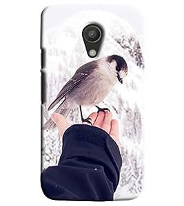 Blue Throat Bird On Hand Printed Designer Back Cover/Case For Motorola Moto G2