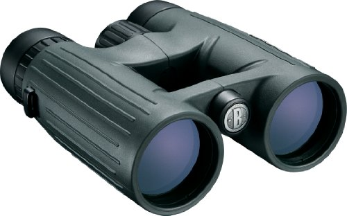 Bushnell Excursion HD Roof Prism Binocular, 8x 42mm, Euro Green