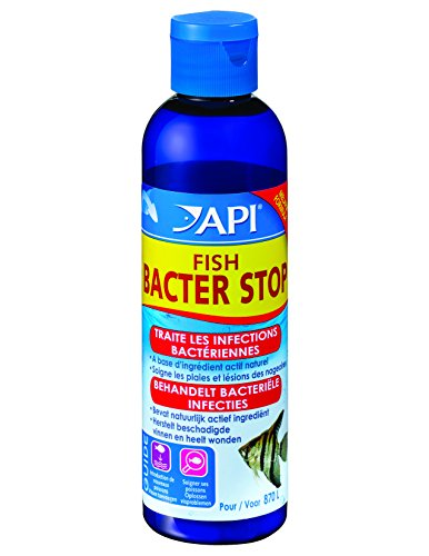API-Hygine-et-Sant-des-Poissons-pour-Aquariophilie-Fish-Bacter-Stop-118-ml