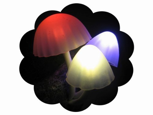 Firefly LED Light Sensor Mushroom Lamp/ MINI potted/bonsai/ Green Plants on the wall/night light,Automatic change color, Romantic LED lighting,Perfect Gift (Ceramics))