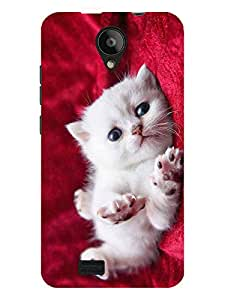 TREECASE Designer Printed Soft Silicone Back Case Cover For Swipe Konnect Plus