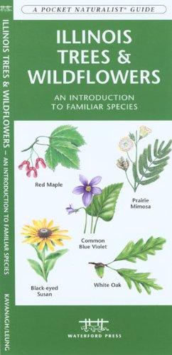 Illinois Trees & Wildflowers: An Introduction to Familiar Species (State Nature Guides)