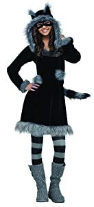 Fun World Costumes Women's Sweet Raccoon Teen Costume by FunWorld