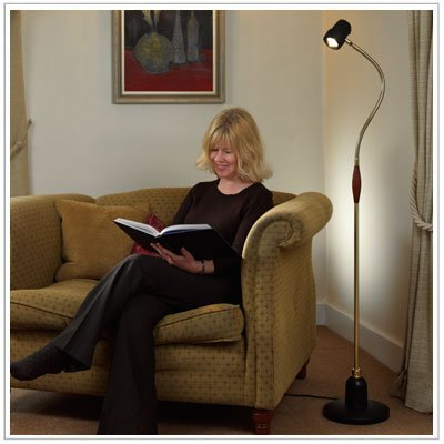 Best Alex Floor Reading Light Direct From Serious Readers For Sale Hamuhnf