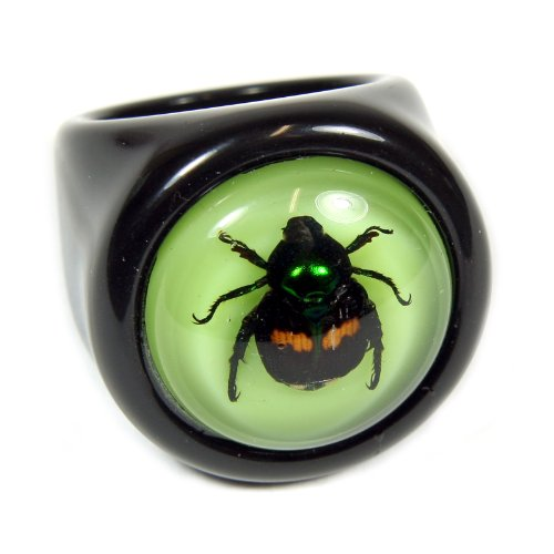 Lucky Beetle Black Ring Size 7