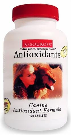 RESOURCES Canine Antioxidant Formula (120 Tablets) learning resources набор пробей