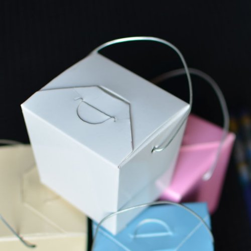 Mini White Take out Boxes, pack of 12