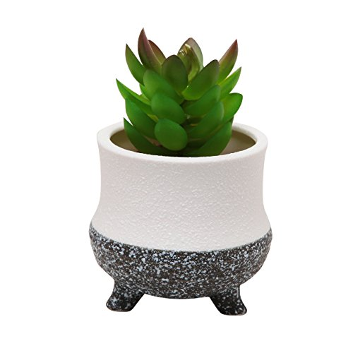 Modern Decorative Small Ceramic Succulent Planter Flower Pot / Desktop Organizer Pen Holder - MyGift®