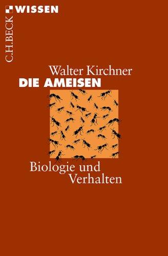 die-ameisen-biologie-und-verhalten