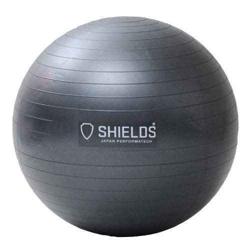 SHIELDS(シールズ) ジムボール65 アンチバーストタイプ ハンドポンプ付 SBAL-65(MGY)