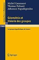 Geometrie et theorie des groupes: Les groupes hyperboliques de Gromov (Lecture Notes in Mathematics) (French Edition)