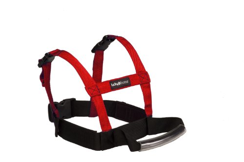 lucky-bums-kids-grip-and-guide-harness-red-one-size
