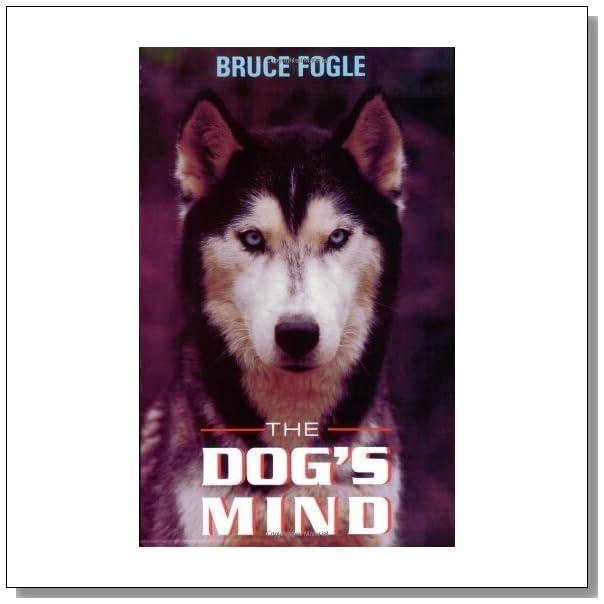 [PDF] The Dog's Mind: Understanding Your Dog's Behavior ...