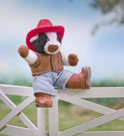 So Small Pets - Western Outfit Set - 1