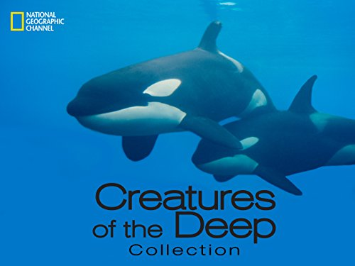 Creatures of the Deep Season 1