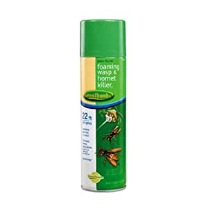 United Industries 562850 Green Thumb Foaming Wasp and Hornet Spray, 17.5-Ounce