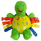 Buckle Toy Bucky Turtle