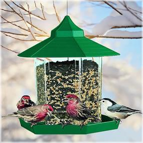 Gazebo-style feeder attracts wild birds in search of seed