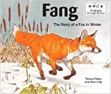img - for Fang: The Story of a Fox in Winter book / textbook / text book