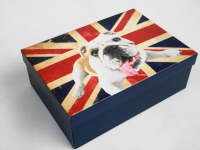 BRITISH BULLDOG CARDBOARD A4 PAPER STORAGE GIFT BOX (3)