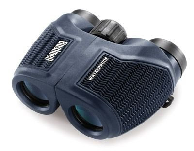 Bushnell H2O Waterproof/Fogproof Compact Inverted Porro Prism Binocular, 10 X 26-Mm, Black