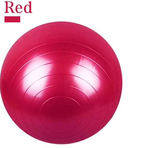 65CM Gym Fitness Ball, H&Z Exercise Pilates Balance Swiss Yoga Gym Fitness Ball Aerobic Abdominal Aerobic Abdominal Static Strength Exercise Stability Ball (Red)